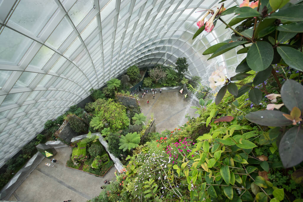 Singapore extension on retreatours how to see the city for Indoor gardening singapore