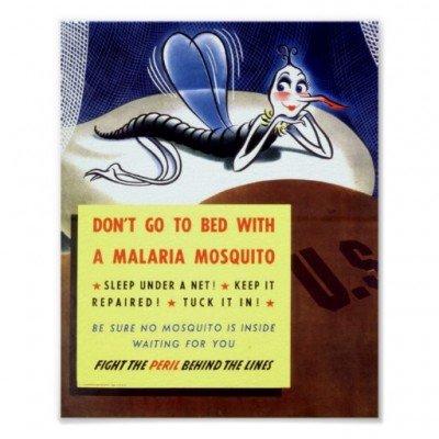 vintage_malaria_mosquito_poster-r970ea99e806843b49e2ad01e7f1e9531_ci5_8byvr_512
