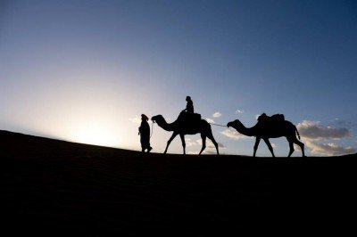 camel silhouette on morocco yoga retreat